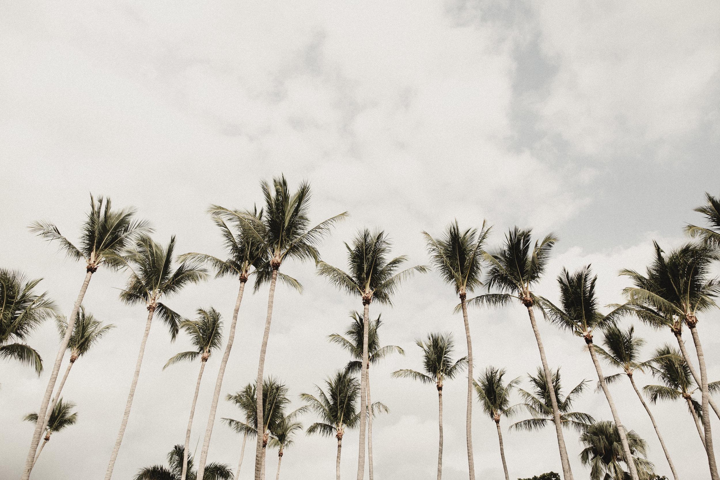 costarica-60.jpg