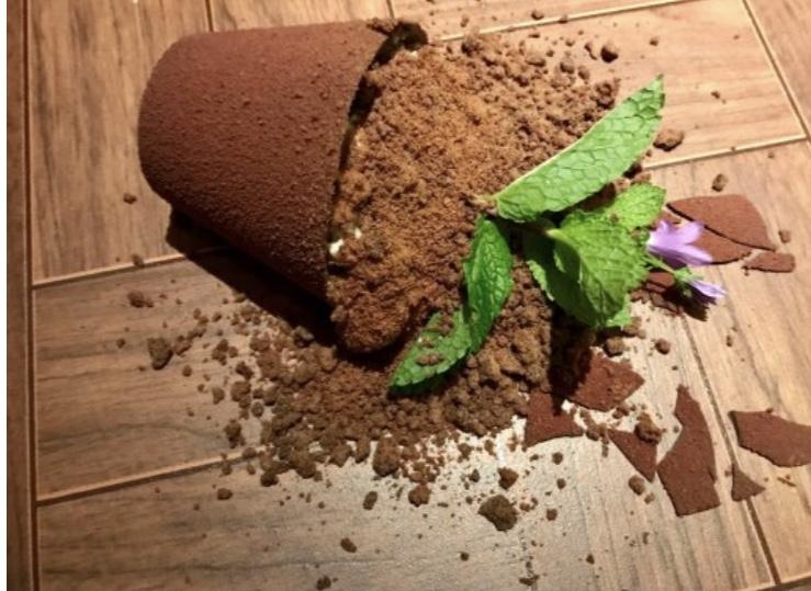 "KOKOKO restaurant: ""My Mother's Favourite Flower"" chocolate dessert"