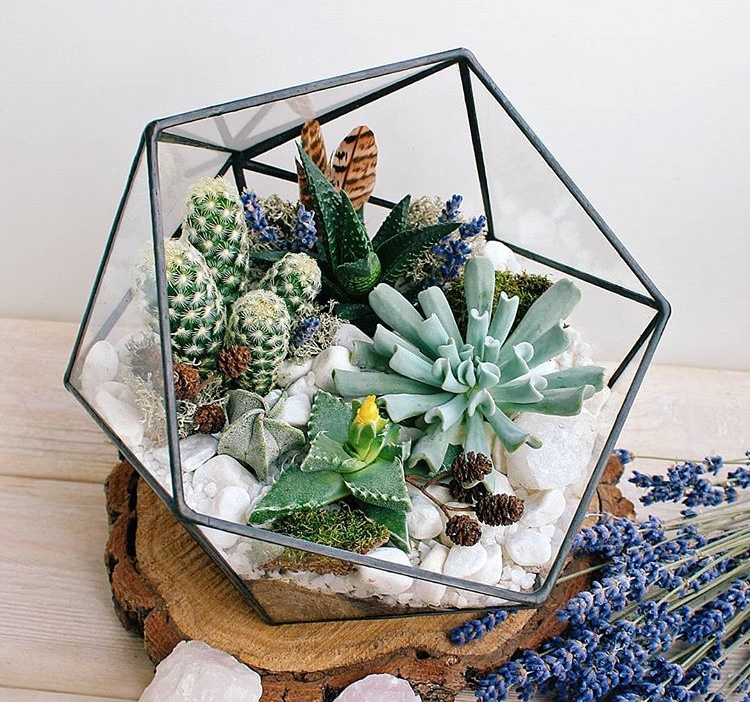 Thurs 15 November 2018 - Yolklore's S L OW down series officially kicks off this Thursday with our terrarium workshop, hosted by the wonderful Northern Flower, and guest speaker, Ali Casson, founder of Ivy Dot interior design studio.As the months grow colder, why not embrace the dark days with a fresh outlook and join us in the Northern Quarter to learn about the plants in your mini eco-system, explore the idea of winter wellbeing + hygge, and have a cosy tipple or two!Terrariums are the perfect addition to your home or as a gift for someone else. All materials, including containers, plants, and knowledge will provided, so just bring along your happy selves!Tickets available from Yolklore