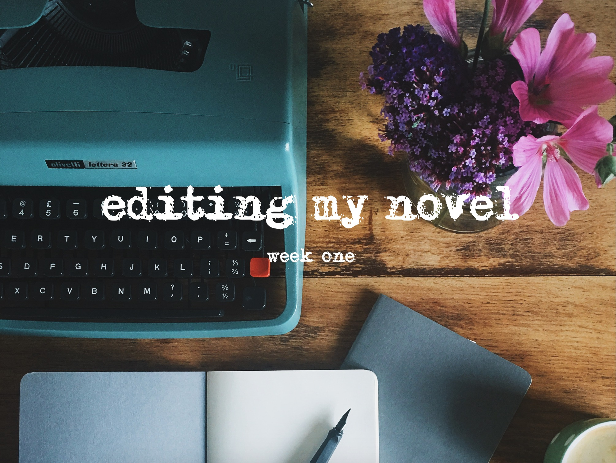 EDITING-MY-NOVEL-WEEK-ONE.jpg