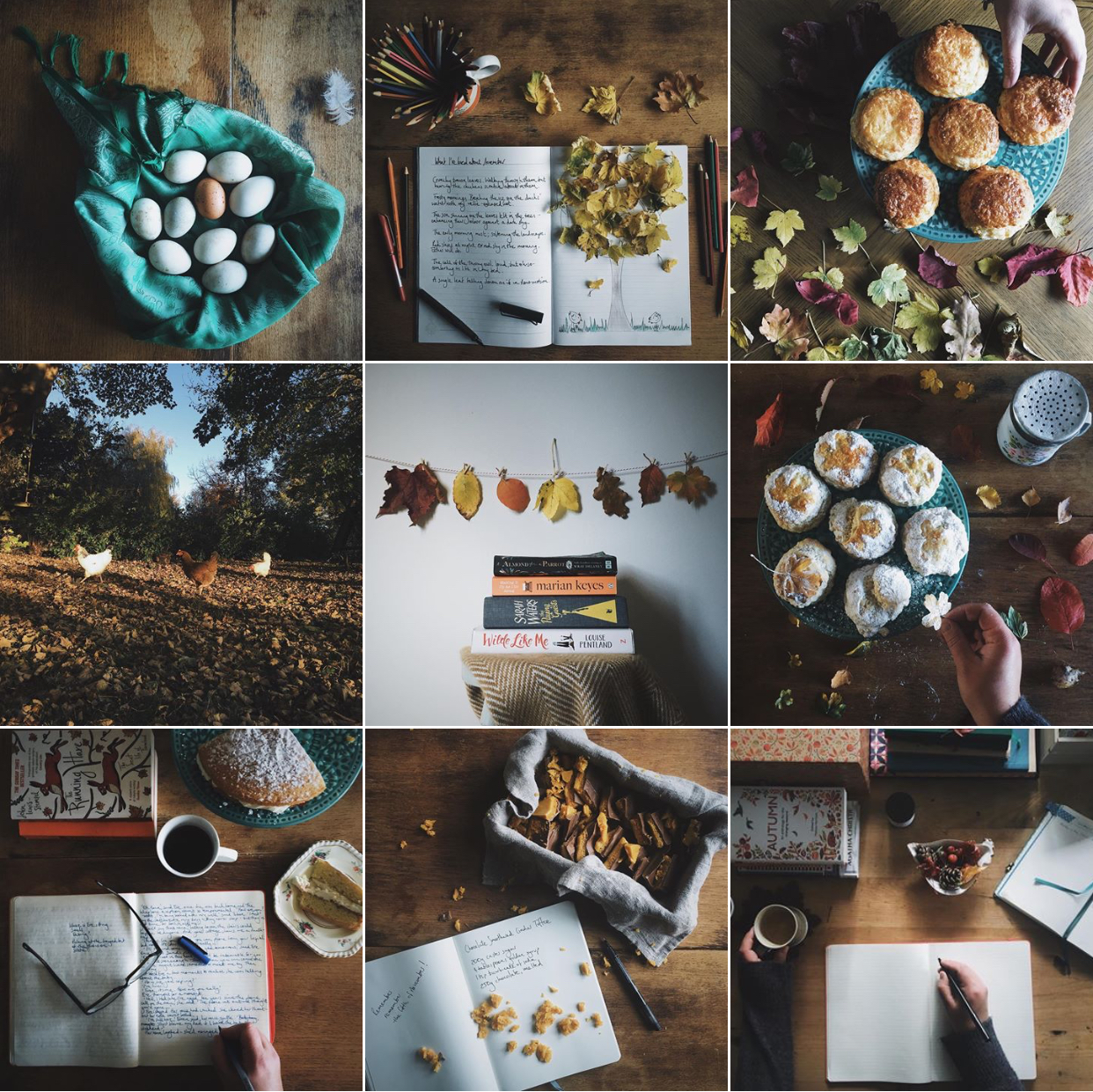 a bookish baker on instagram