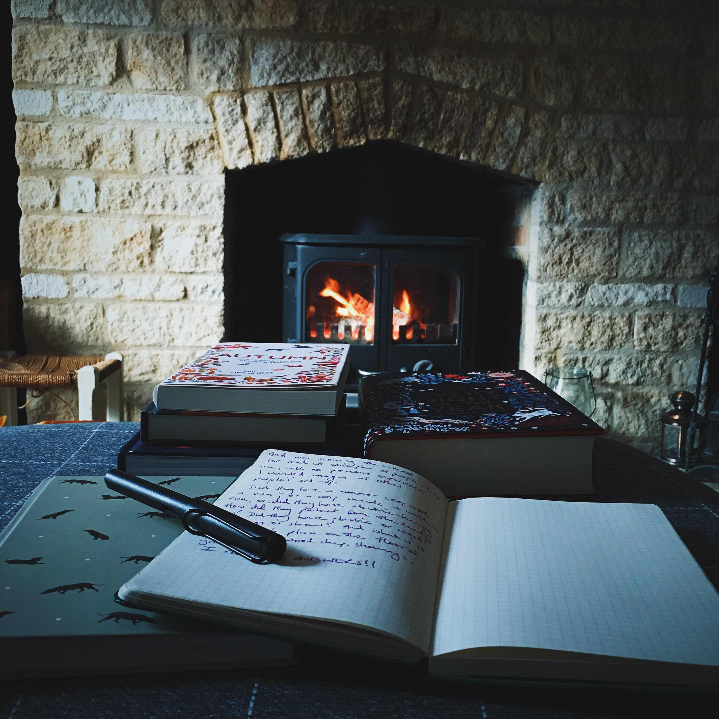 cosy woodburner and books