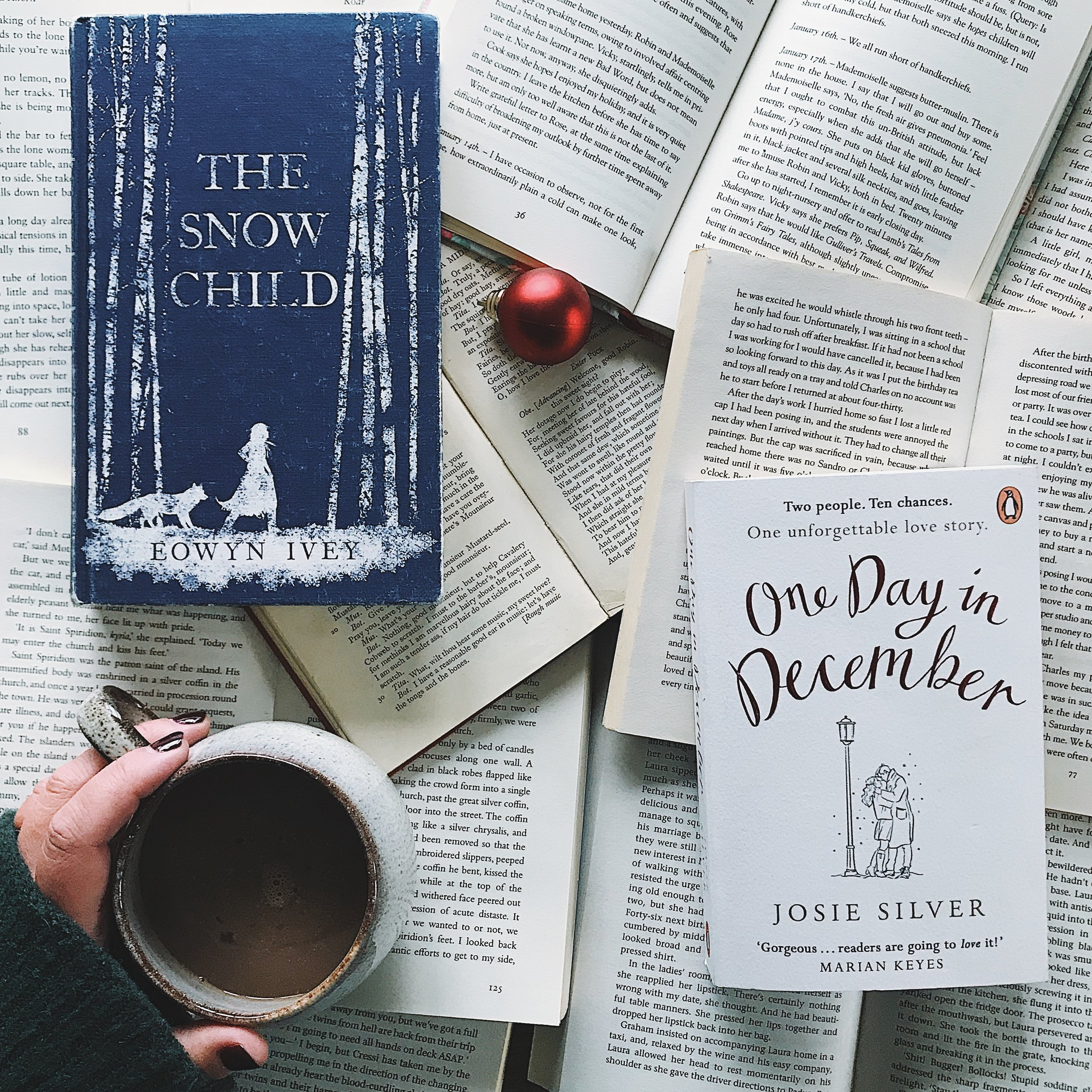 the December pick for the A Bookish Baker Book Club