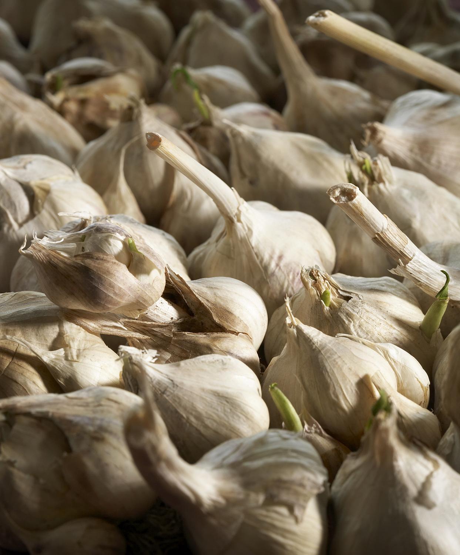 Garlic_Potato Parmesan.jpg