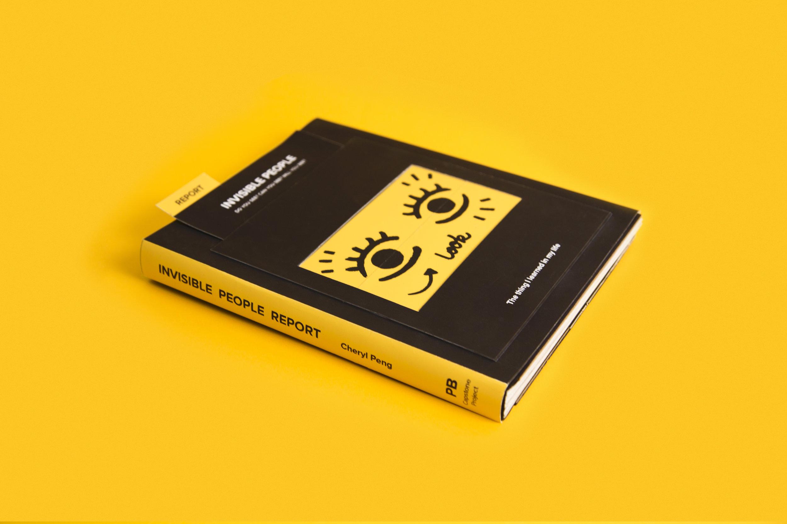 IP book_2.jpg