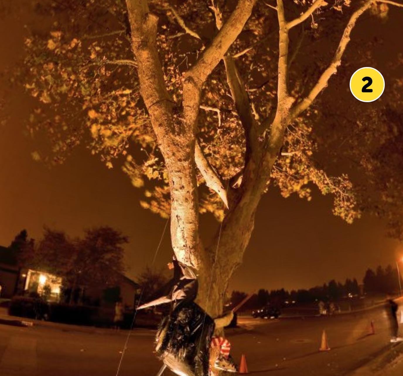 latin-halloween-activity