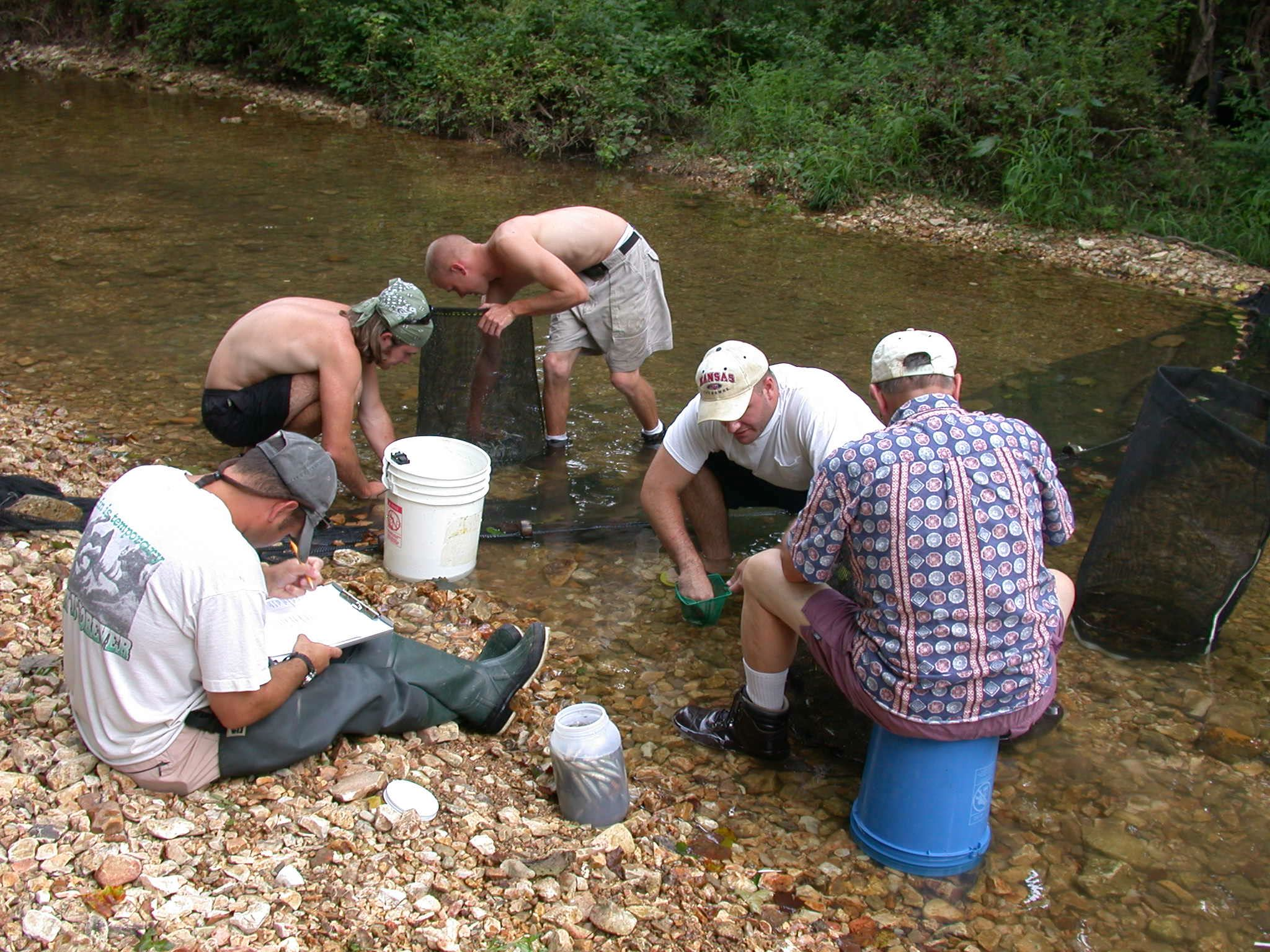 Water Quality Monitoring.jpg