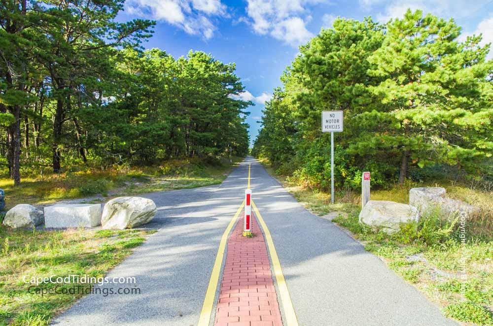 Cape-Cod-Rail-Trail-Wellfleet-MA.jpg