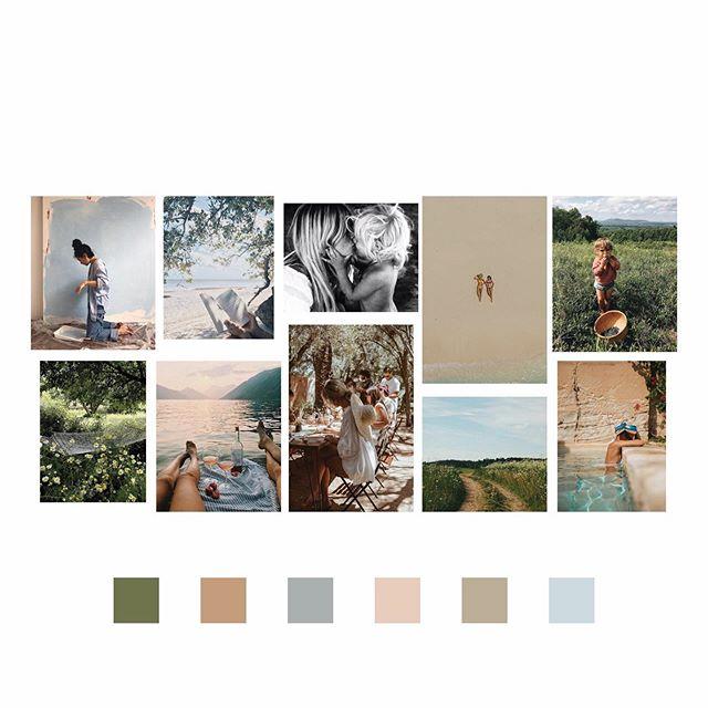 August moodboard  #stillsummer  #graphicdesign #printdesigner #littleroaddesigns #littleroadstudio #fwportfolio #calledtocreate #creativeprocess #botanicalillustration #artistmom