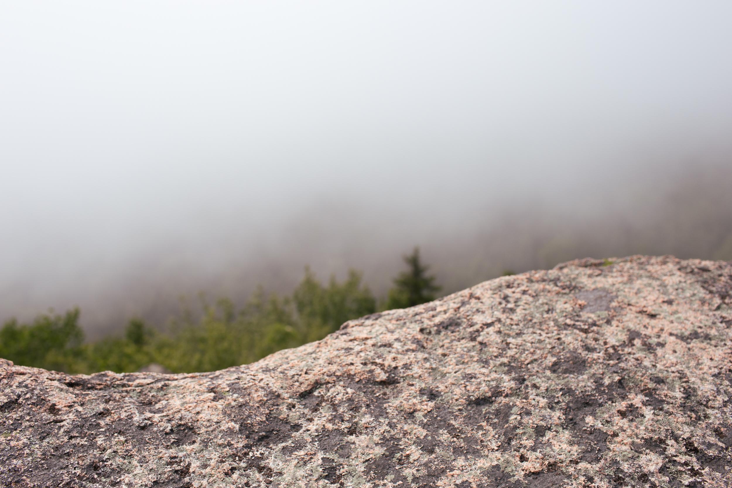acadia-national-park-anna-mcclellan-photography-3037.jpg