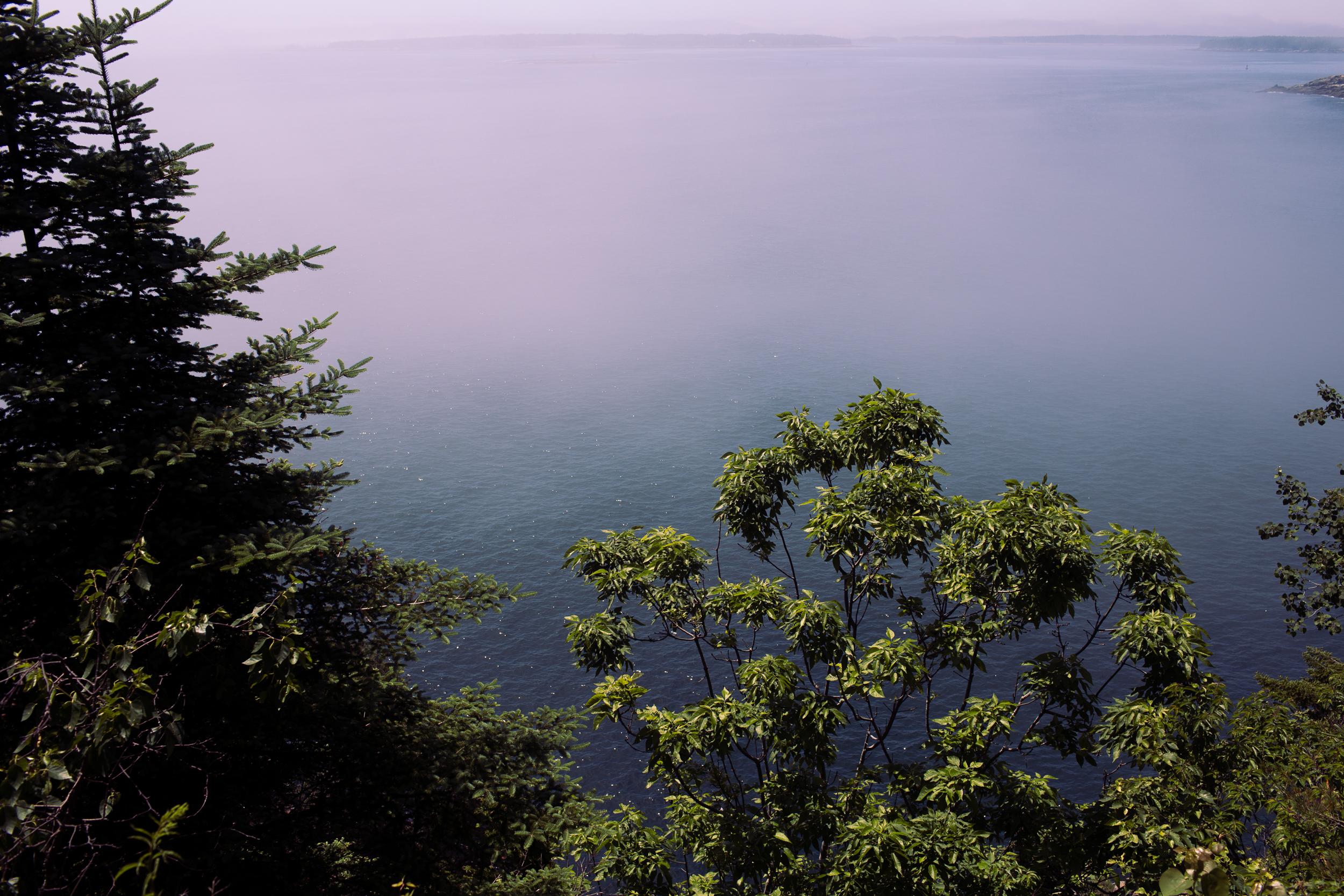 acadia-national-park-anna-mcclellan-photography-3101.jpg