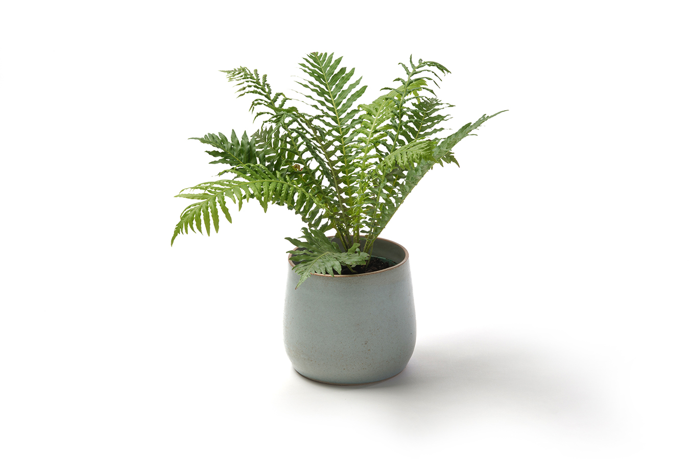 stoneware planter in soft turquoise