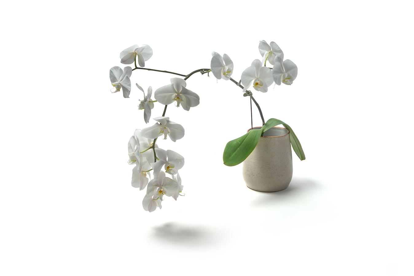 stoneware orchid pot