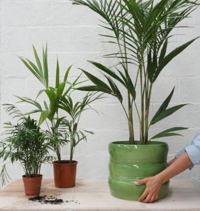 Ingrid Tufts Super large bamboo ceramic pot