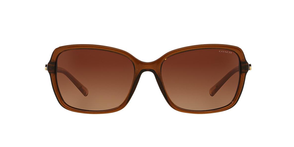 HC8152 Brown Brown $215.jpg