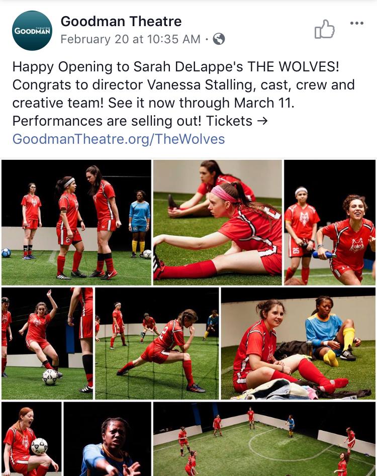 Wolves opening.jpg