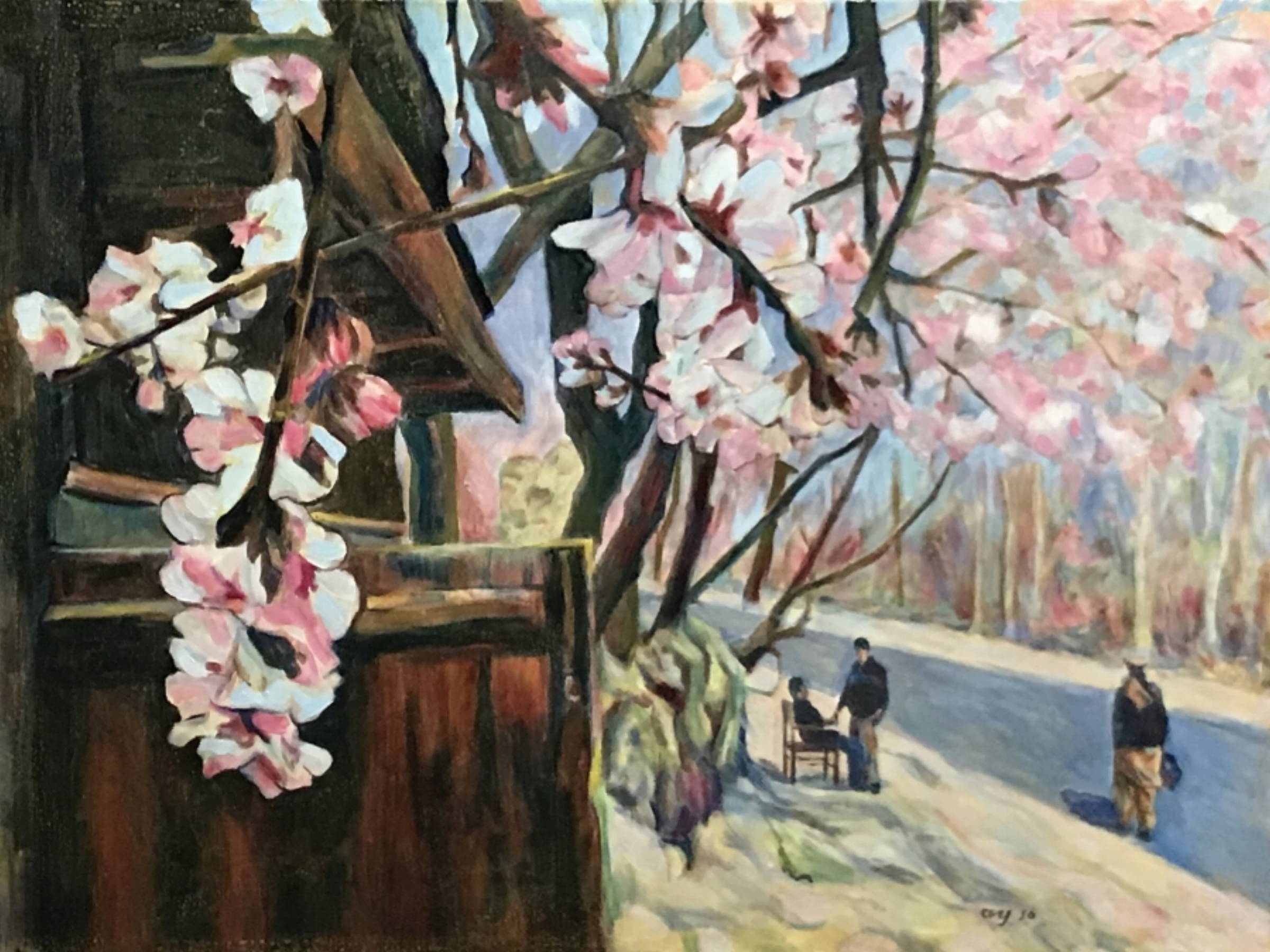 Spring in Balakot