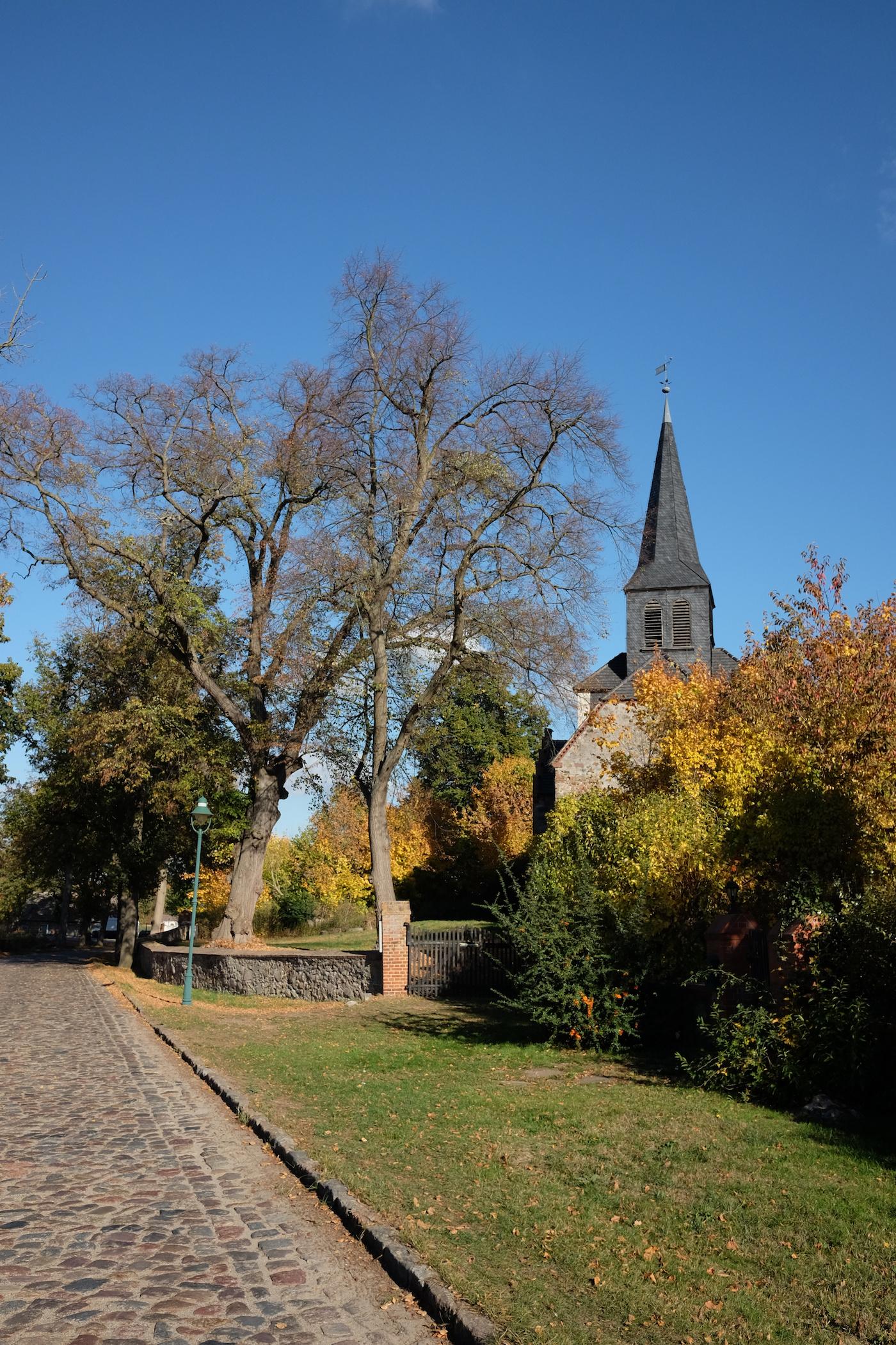 Beeskow__Sauen_wecyclebrandenburg32.JPG