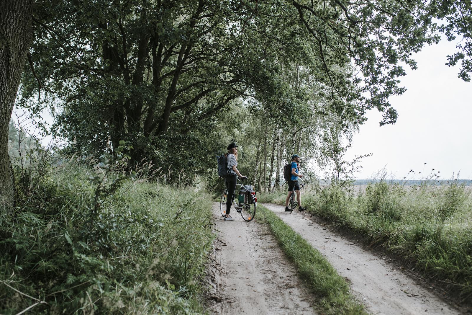wecyclebrandenburg_(c)Madlen_Krippendorf_bredereiche3.jpg