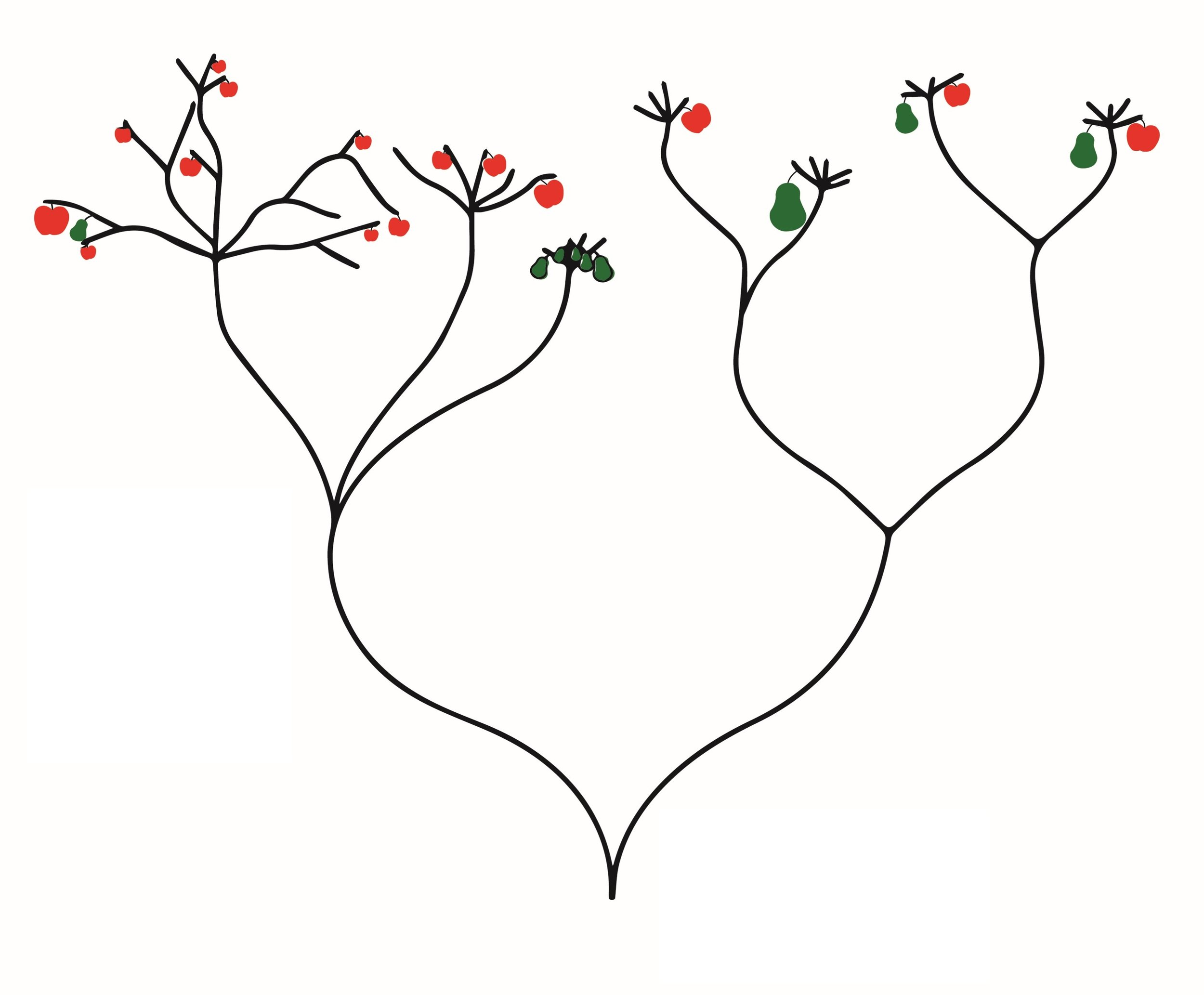 The tree of branching possibilities…