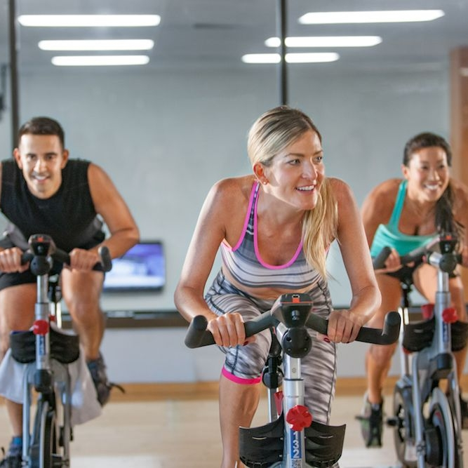 Hawaii's most diverse catalog of fitness services -