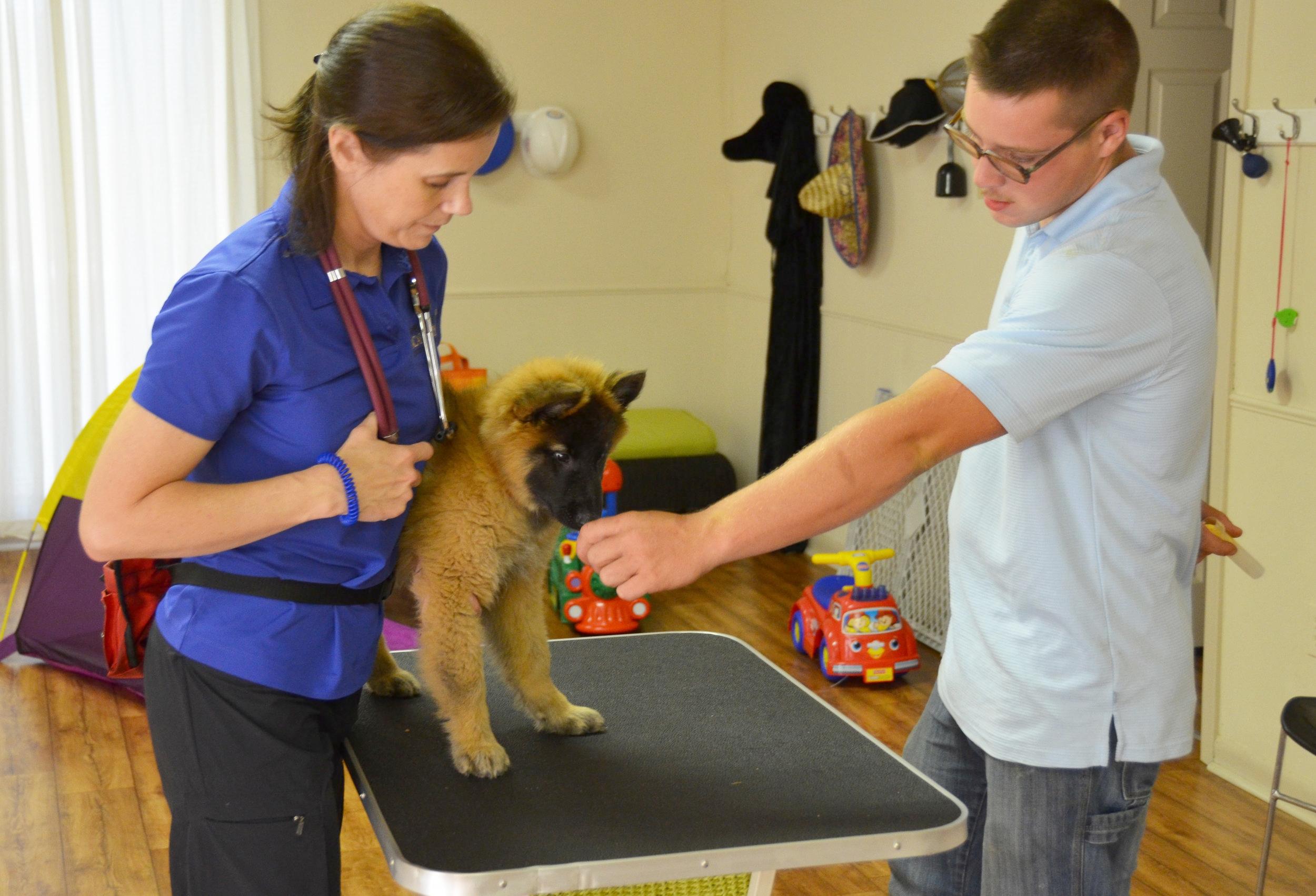 International seminars for veterinarians, vet techs, vet hospitals.