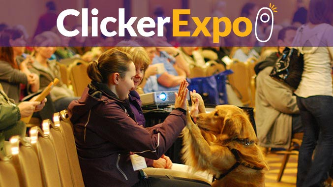 Clicker Expo 2016 video on demand with Ken and Debbie Martin.