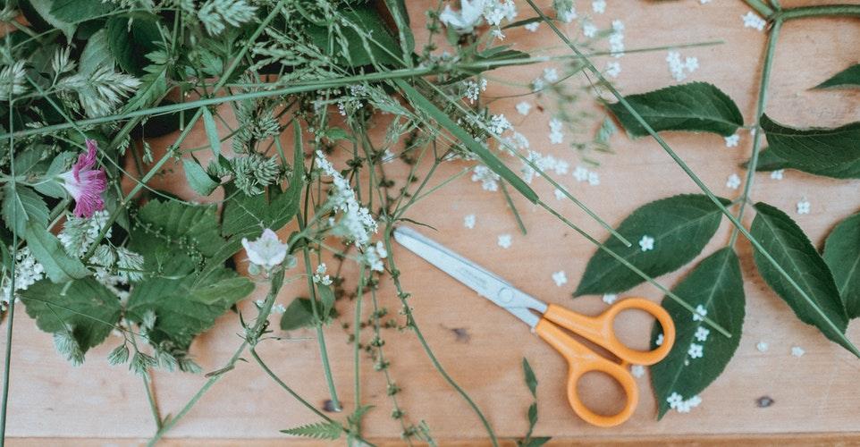 FLOWER ARRANGEMENT插花组 - WED 星期三 3-5 pmOnline Registration 网上报名