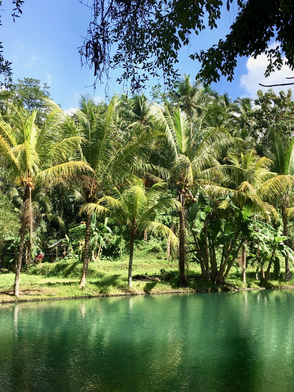 See Bali