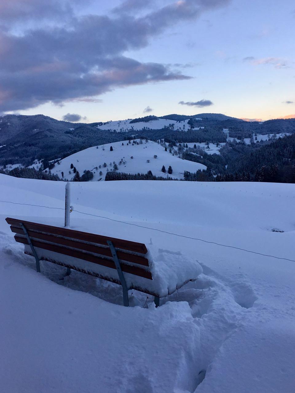 Winterstille im Schwarzwald
