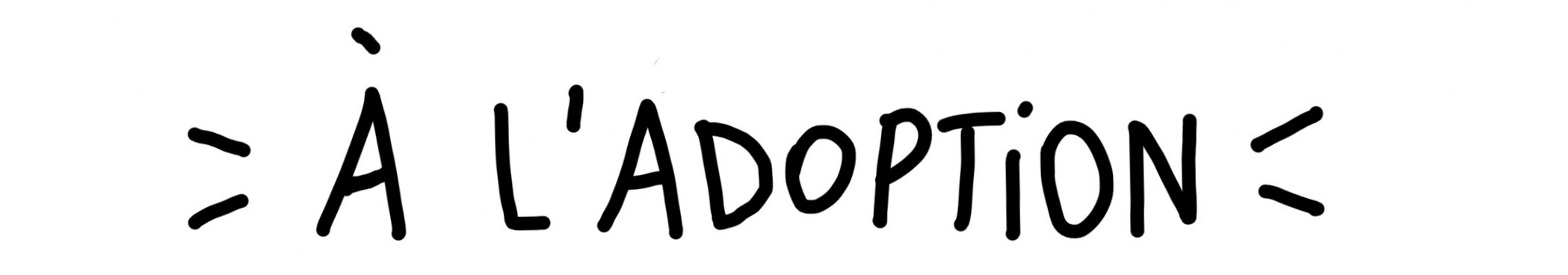 al'adoption.jpg