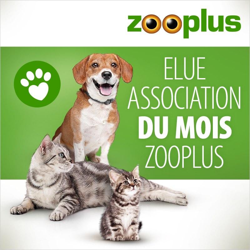zooplus.jpg