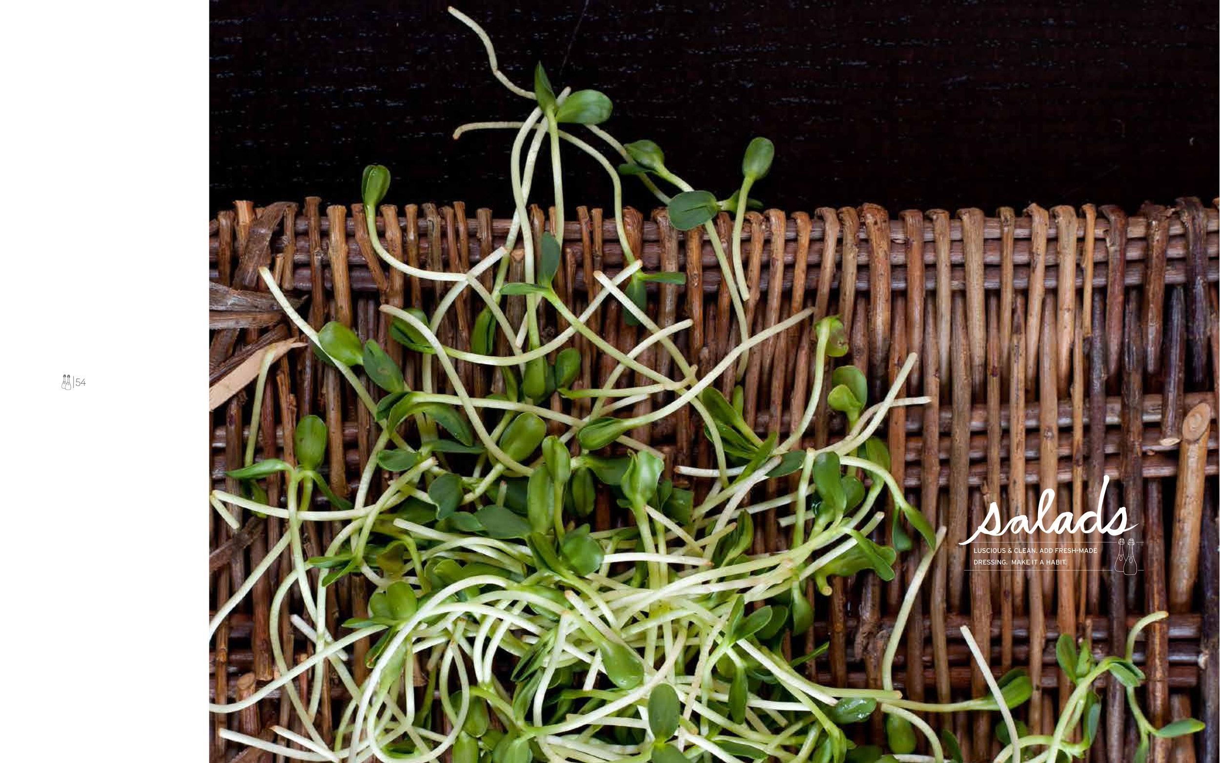 5-Salads_cover.jpg