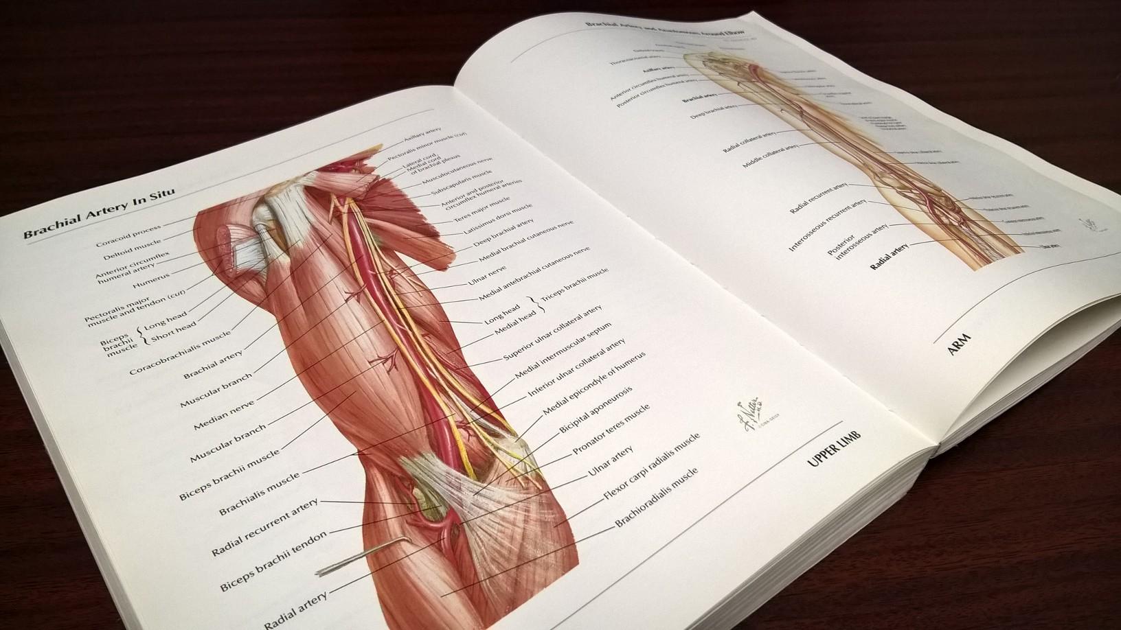 anatomybook.jpg