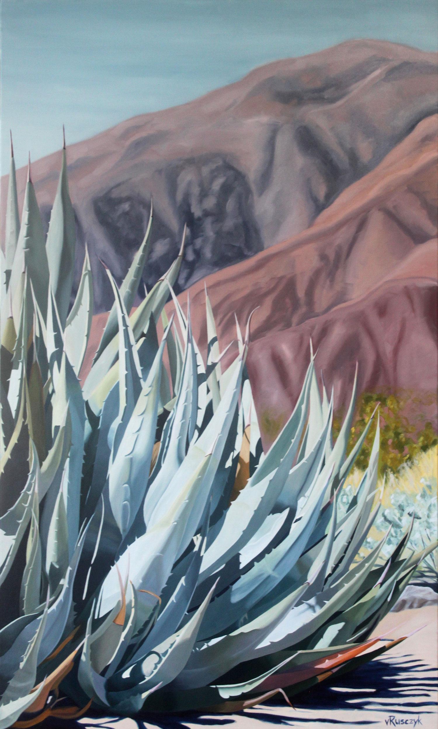 Desert Agave, Borrego Springs