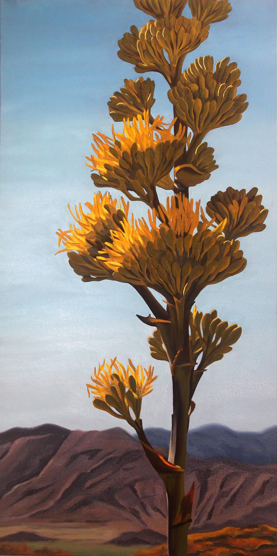 Desert Agave Bloom Stalk
