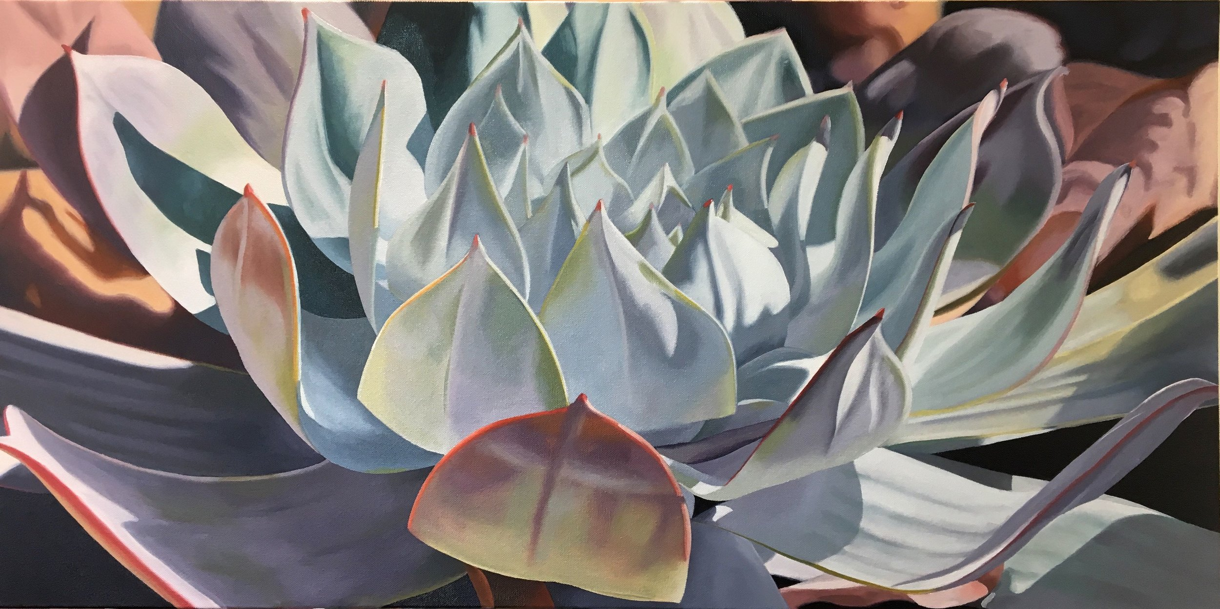 "Dudleya. Oil on Canvas, 12""x24"""