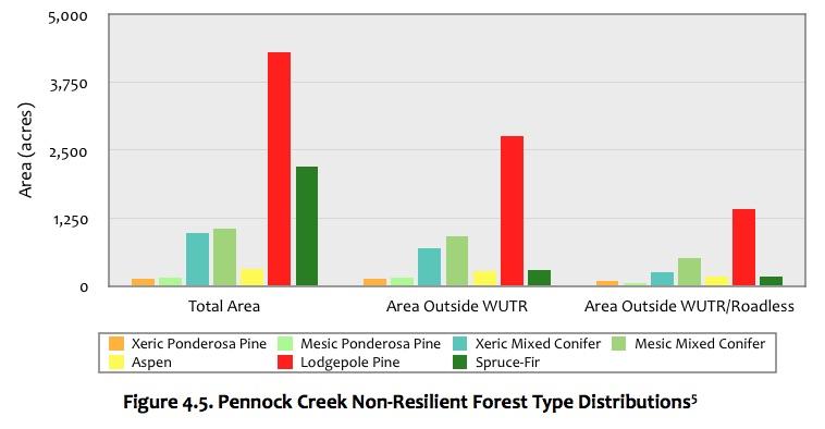 Figure 4.5 Pennock Creek Forest.jpg