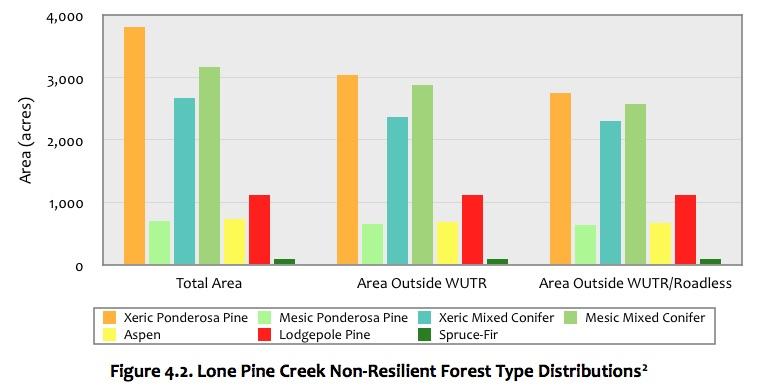 Figure 4.2 Lone Pine Creek Forest.jpg