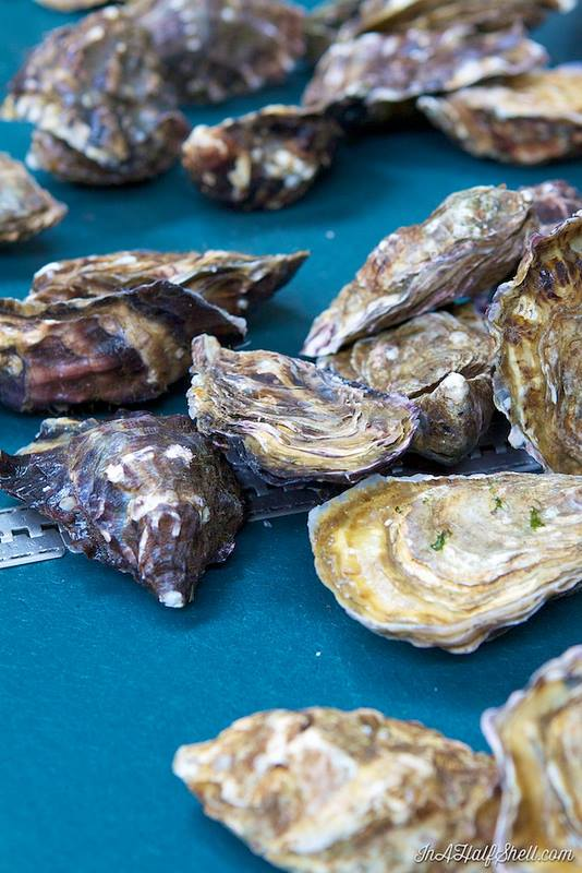 Moyasta Oysters. Source/Photographer: In a Half Shell Blog,   Julie Qiu