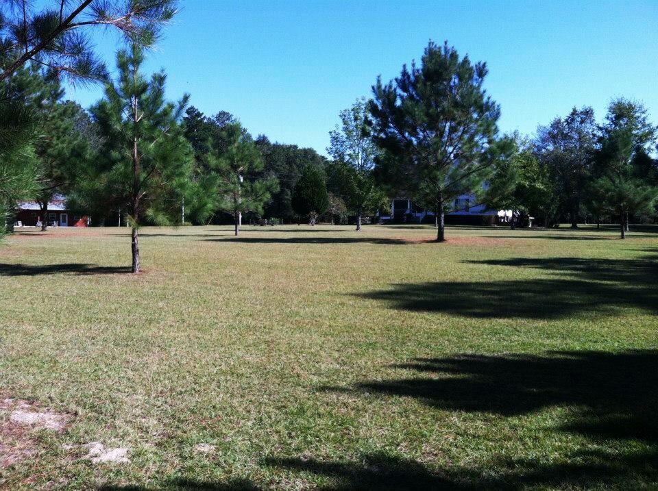 My family farm in Quincy, FL.