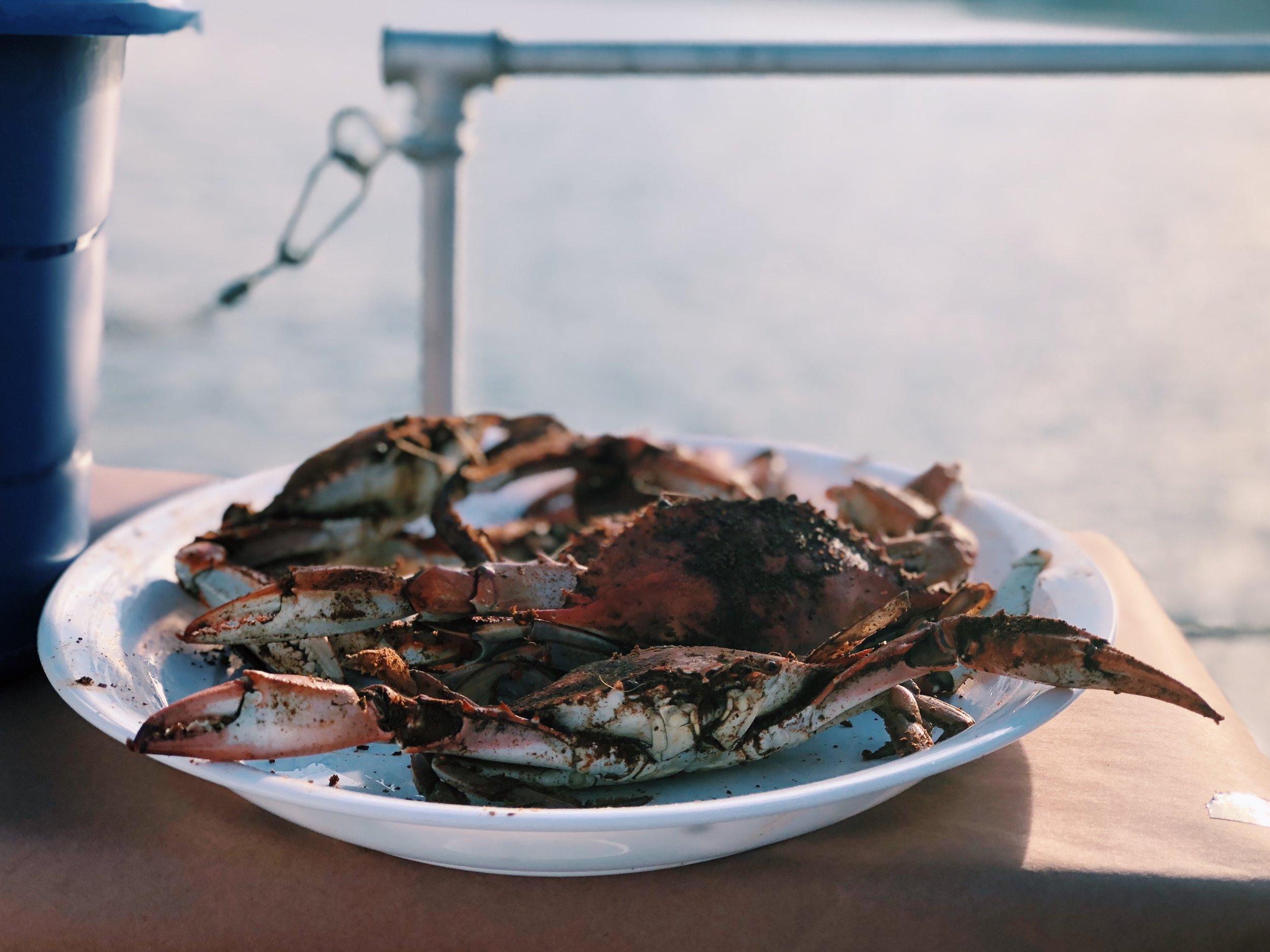 Crab feasts. YUM. Source: www.halfshelladventures.com