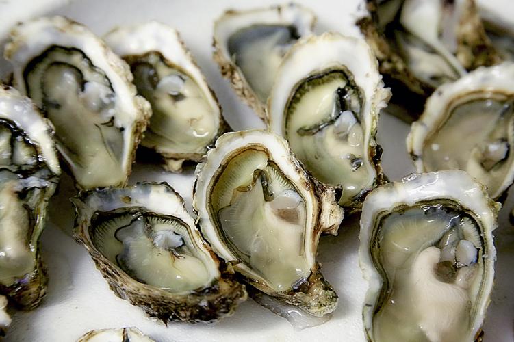 Oyster scalds. Source: www.halfshelladventures.com