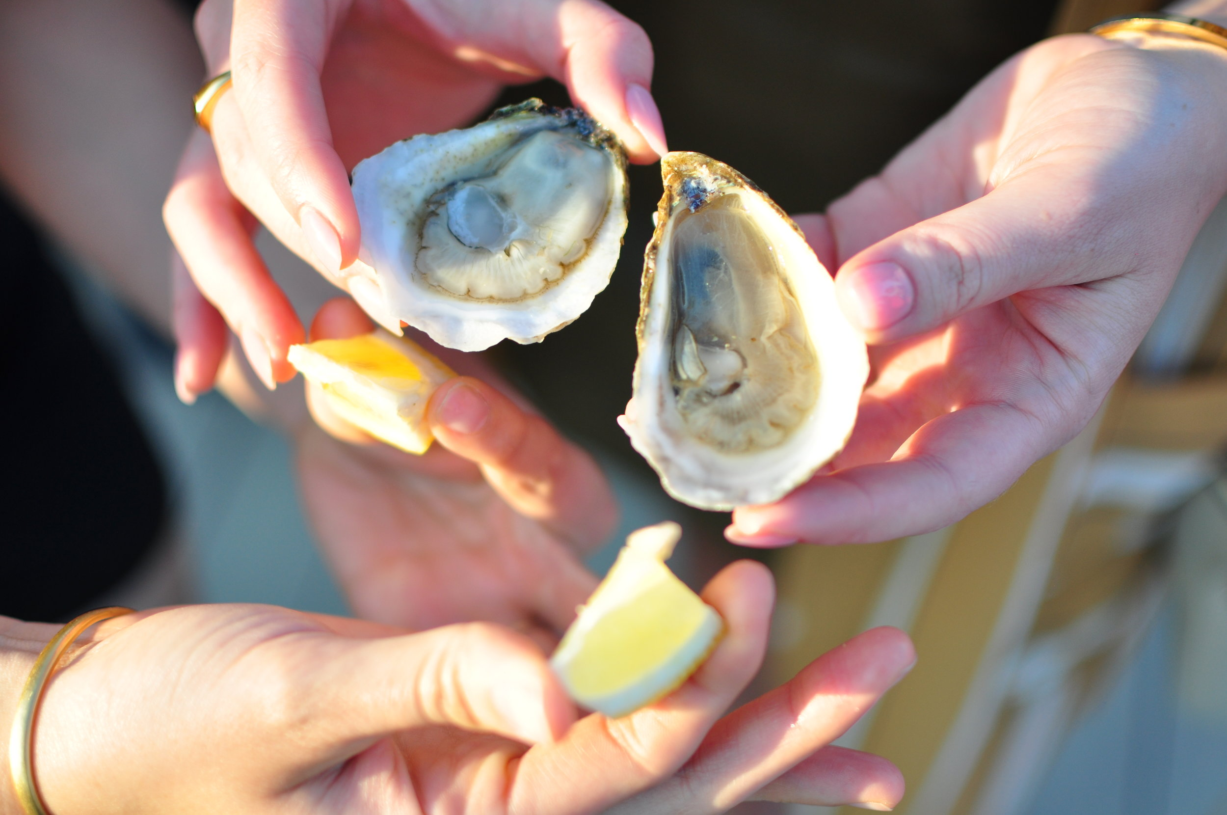 Always better shared. Photo Cred: Warwick Ombler of Lady Oyster.