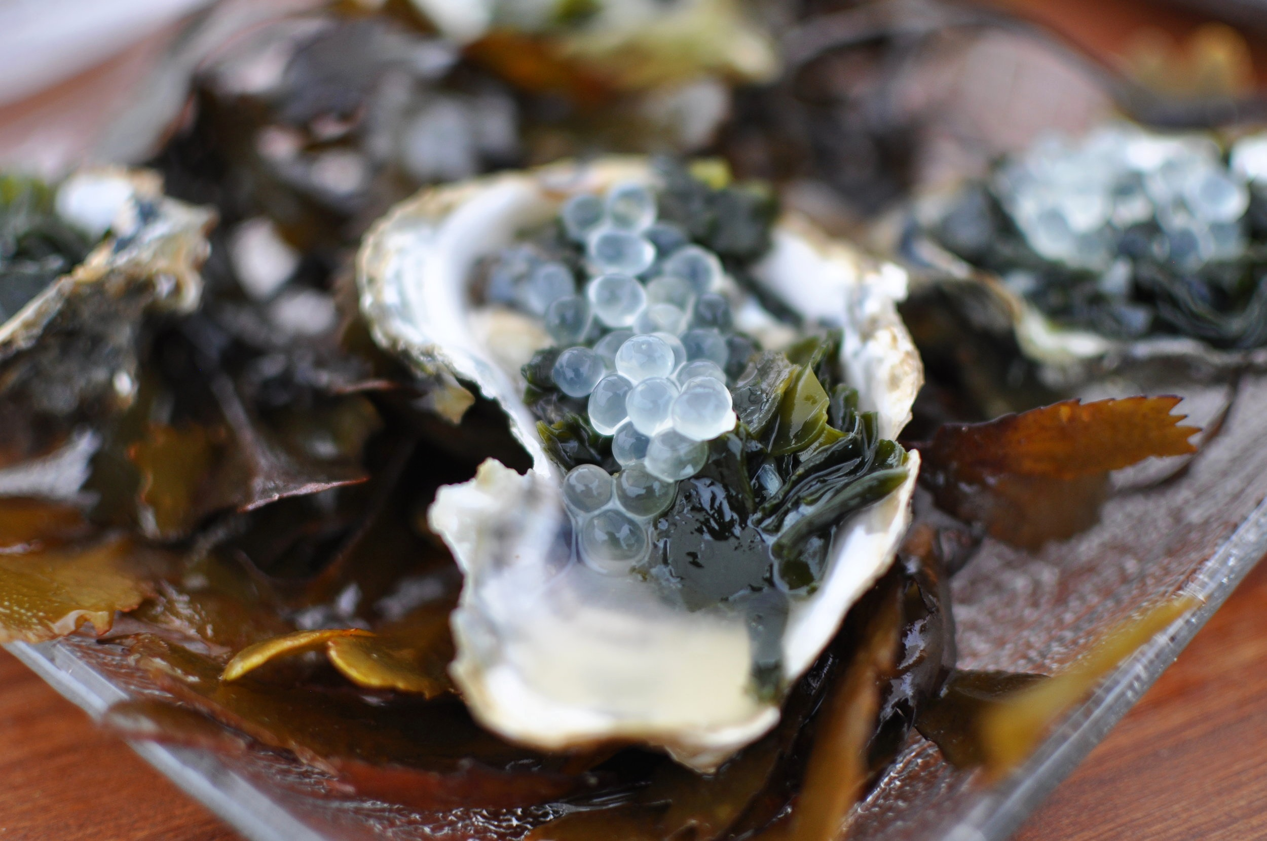 Voisin oysters with Herring roe and Japanese seaweed
