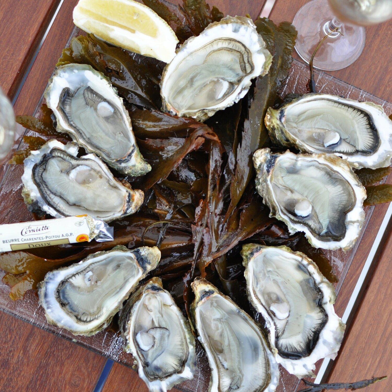 Grouin OystersIle de re, France -