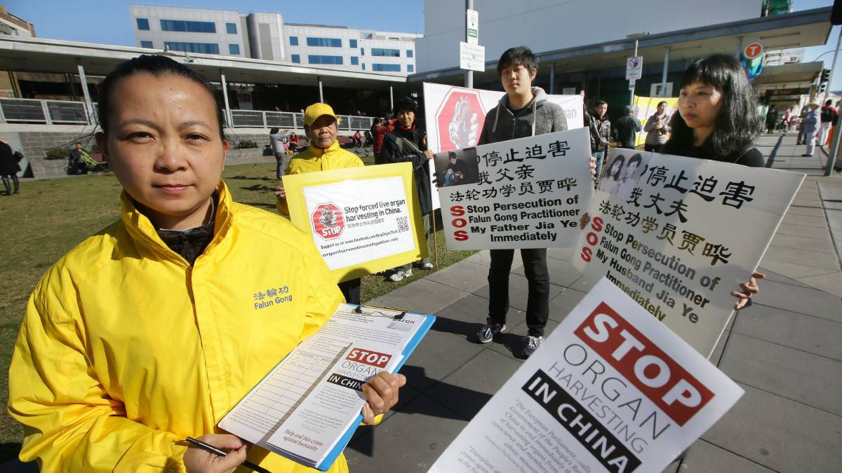 Falun Gong practitioners in Hurstville calling for an end to organ harvesting. Li Liu and her son Eric (right), with Wei Zhuang and her mother Xiao Fang (both in yellow). Picture: John Veage.