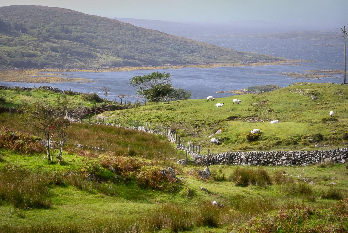IrelandSlideshowHi_051.jpg