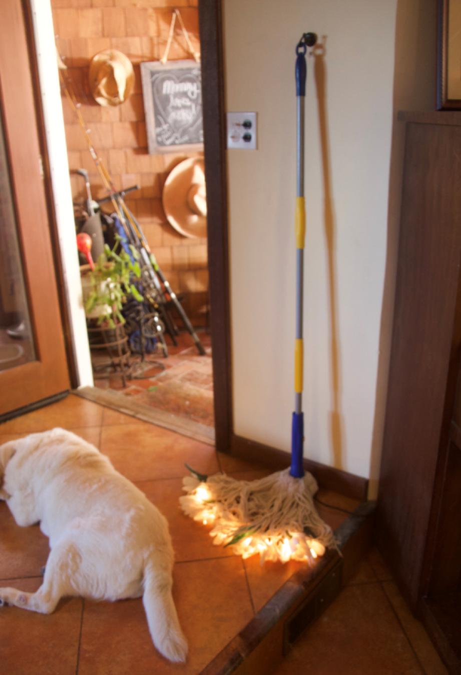 housework-1.png