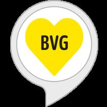 BVG Skill Logo.png